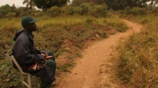 Ismét egymásnak estek a keresztények és a muszlimok Közép-Afrikában