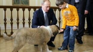 A Télapó-pótló Putyin kiskutyás cukisága