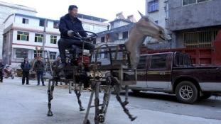 Robotlovat fabrikált a kínai nyugdíjas