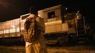 Pancho kutya és a migránsok  megpróbáltatásai Mexikóban