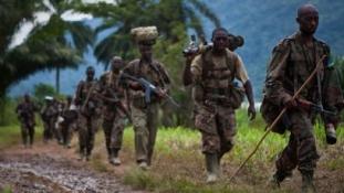 Offenzívát indítottak a hutu lázadók ellen a Kongói DK-ban