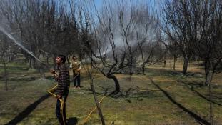 Gondban az indiai kormány a földtörvény miatt