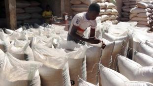 120 ezer új munkahely Nigériában