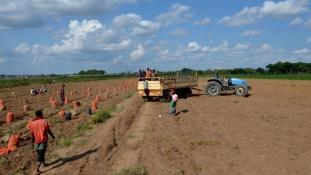 A finnek is támogatják Zambia mezőgazdaságát