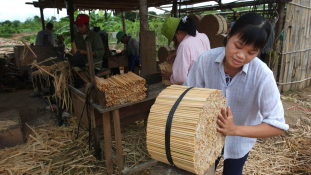 Vietnam Ázsia gazdaságának új tigrise