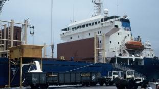 Késik a kakaó: kameruni kikötői káosz a Közép-afrikai Köztársaság belháborúja miatt