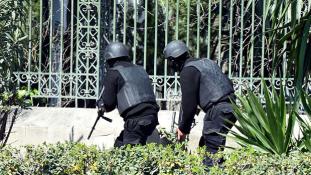 Kik öltek és miért külföldi turistákat Tuniszban?