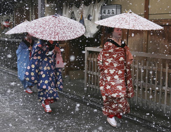 Maiko and Geisha Attend New Year's Ceremony