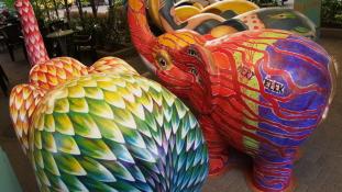 Sorsfordító elefántok találtak gazdára a Tranzit Art Caféban