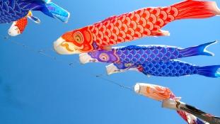 A japánok tavasszal nyaralnak