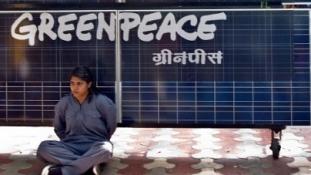 Indiában bezárhat a Greenpeace