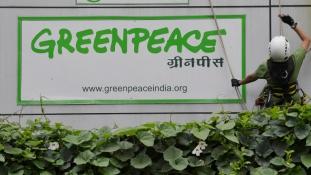 Egyáltalán nincs peace az indiai Greenpeace körül