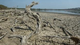 Drága fiú – sokba lesz a világnak az El Niño