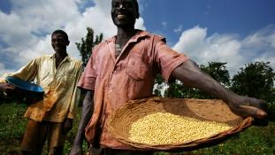 A Rockefeller Alapítvány kinyitja a pénzeszsákot Afrikában