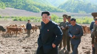 Kim Dzsongun ezúttal teheneket és halakat tekintett meg