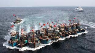 Kína szépen lassan lehalássza Nyugat-Afrika partjait