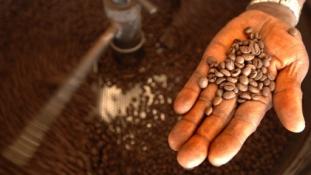 Kávészünet – géppisztollyal