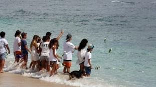 Gyerekeket harapott meg egy cápa a strandon