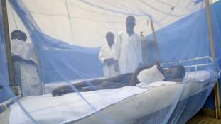 Sárkunyhók helyett jobb házak, védelem a malária ellen
