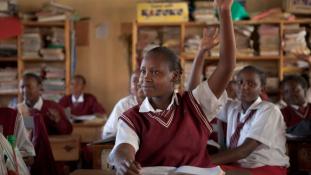 Tanárok tucatjait függesztik fel zaklatásért