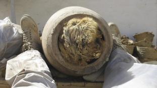 Nyolcmillió mumifikált kutya egy tömegsírban