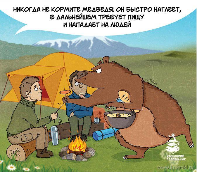 Soha ne etessük a medvét: gyorsan befalja az ételt és még többet követelve az emberre támad!