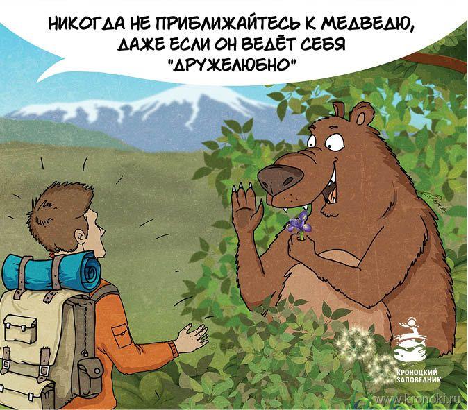 Akármilyen barátságosnak is tűnik a medve, ne merészkedjünk a közelébe!