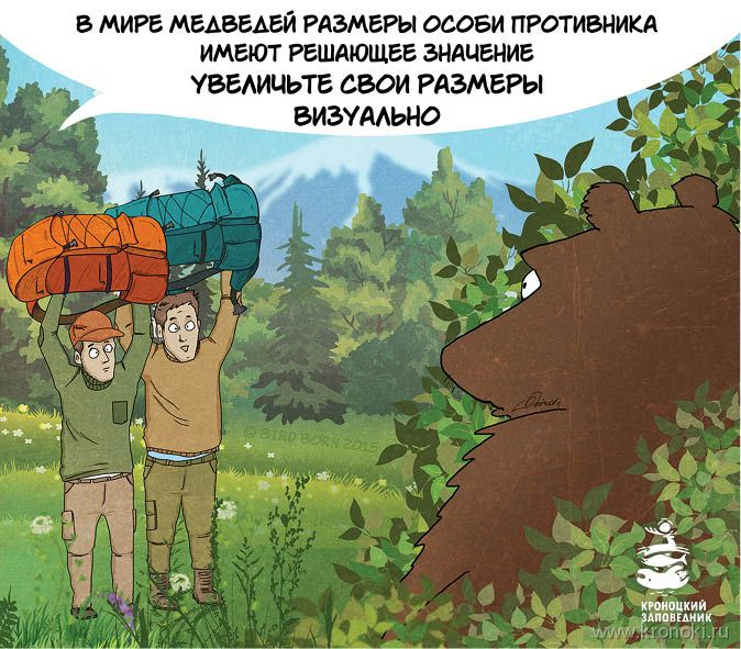 Az ellenség nagyságának komoly jelentősége van a medvék világában, nőjön nagyra vizuálisan!
