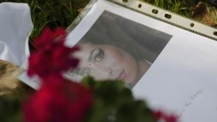 Apja szerint félrevezető az Amy Winehouse-ról készült új film