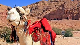 3G a sivatag közepén, pezsgős reggelik és hőlégballonos napfelkelték: az úticél Jordánia