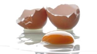 11 millió import tojást törtek össze Angolában