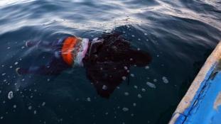 Többszáz bevándorlót szállító hajó borult fel a tengeren Líbiánál
