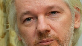 A Wikileaks százezer dollárt ajánl  egy dokumentumért