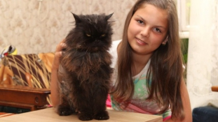 World's oldest cat is Hungarian