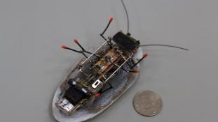 """""""Halálfejes robotot"""" készítettek orosz tudósok"""