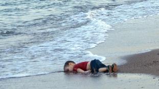 Aylan Kurdinak hívták, Kobaniból indult és 3 éves volt