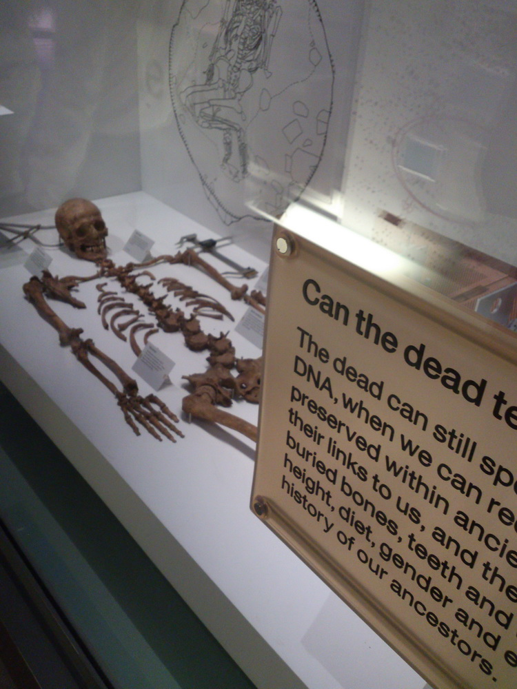 Sience  museum