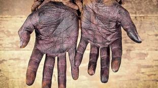 David Cameron: London nem fizet kártérítést a rabszolga-kereskedelem áldozatainak