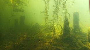 Víz alatti romok Japán legnagyobb tavában