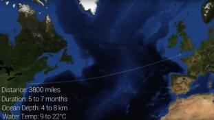 Az Atlanti-óceánt készül átúszni egy botswanai sportember (videóval)