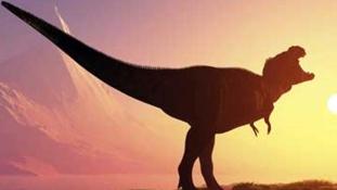 200 millió éves dinoszaurusz debütált Dél-Afrikában