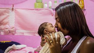 Zika vírus állhat a tömeges születési rendellenességek hátterében