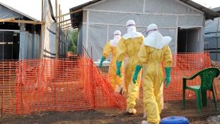 Ünnep Guineában: ebolamentes az ország, ahonnét a járvány elindult
