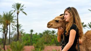 Törökország után Marokkó lehet az orosz turisták kedvenc célpontja