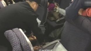 Rendőrök rángatták le a professzort a repülőről