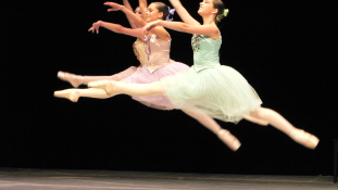 Közgazdaságot tanít a balett-táncos