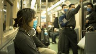 Visszatér a madárinfluenza – ezúttal Amerikába