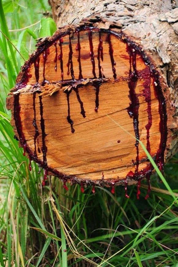blood-tree-2