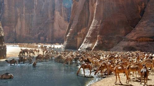 Guelta d'Archei oázis a Szaharában