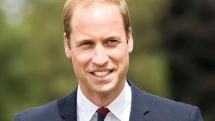Vilmos herceg kopasz foltjának örül a brit sajtó